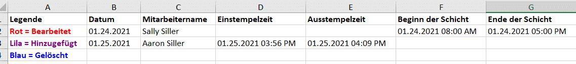 Stechuhrbericht-Excel